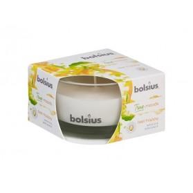 Aromatická svíčka 50/80 Bolsius Feel happy