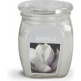 BOLSIUS Aroma svíčka ve skle 120/92 Magnolie
