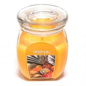 BOLSIUS Aroma svíčka ve skle 120/92 Tropic